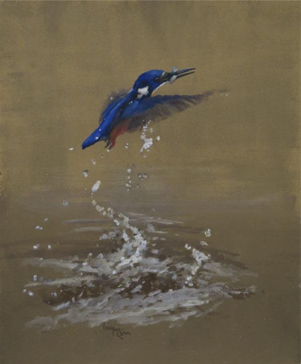 Azure Catch