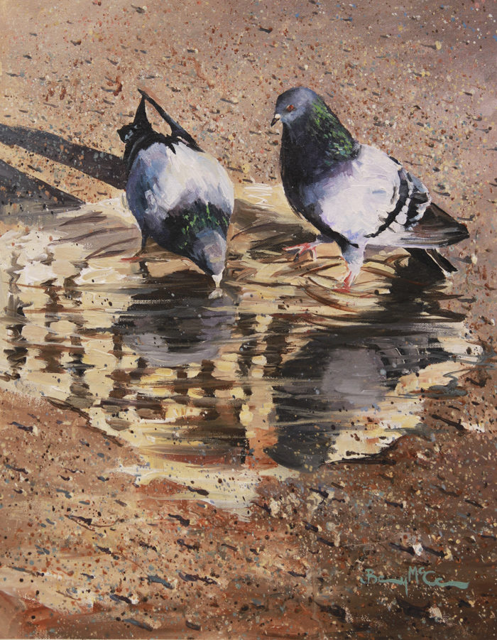 Pigeons, Puddles & Pebbles
