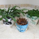#20 Small Pot Plant Cover