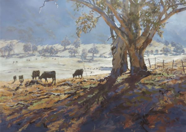 Lucy McCann Frost in the Valley
